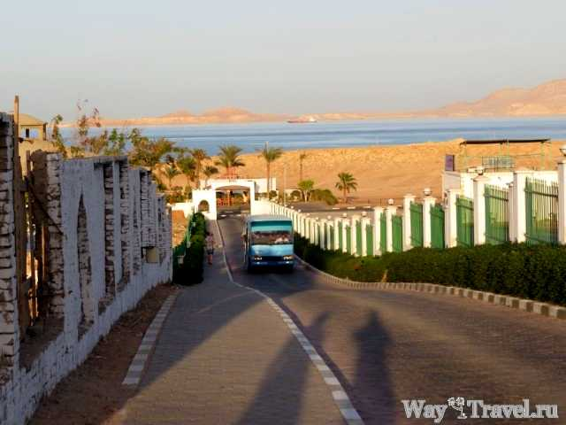 Автобус до пляжа (Bus to the beach)
