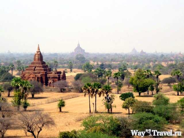 Храмовый комплекс Баган (View of the pagodas in Bagan)