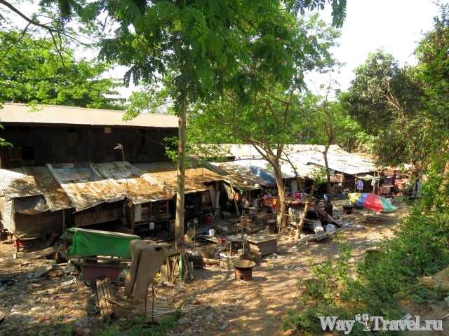 Трущебы (Slum)