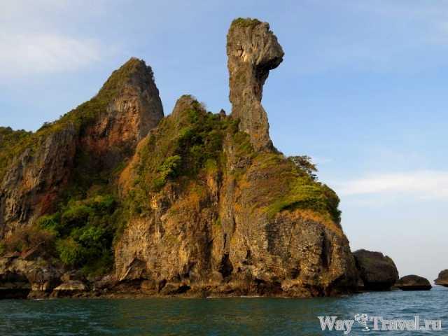 Остров Курица (Chiken Island)