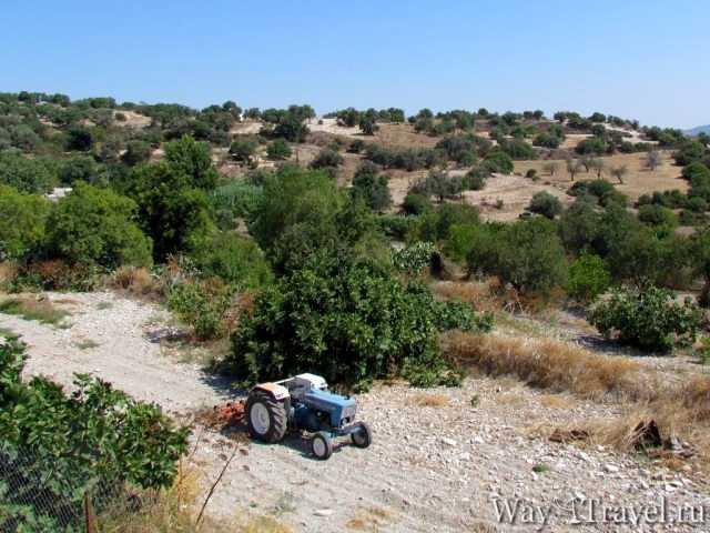 Экскурсии по острову Кипр