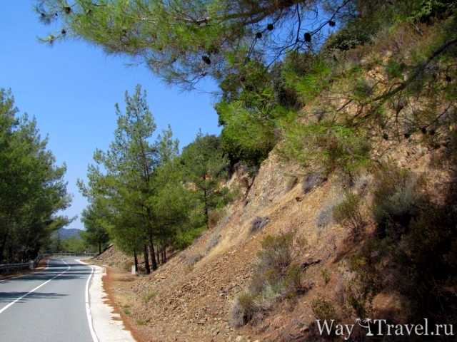 Дорога в горах Кипра (Road in the mountains of Cyprus)