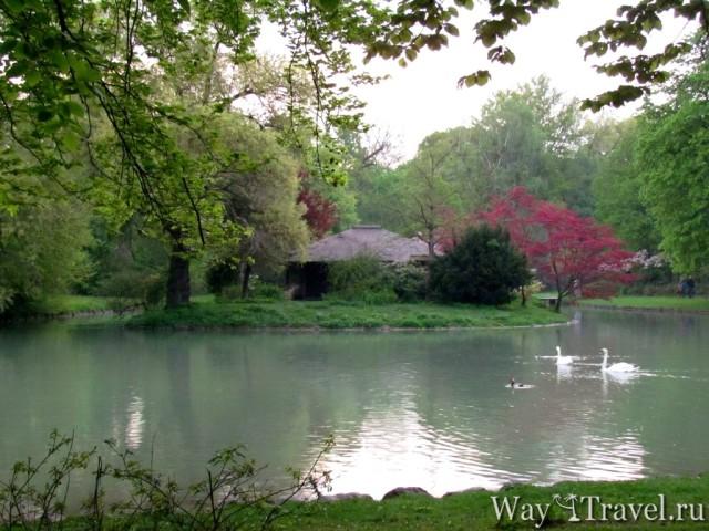 Английский парк (Englischer Garten)