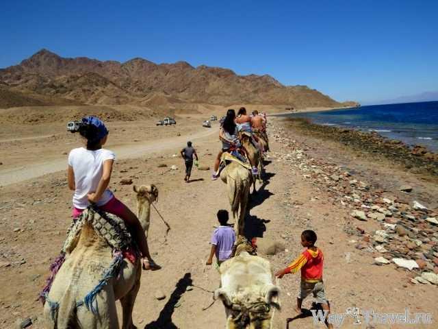 Цветные каньоны и заповедник Абу-Галум