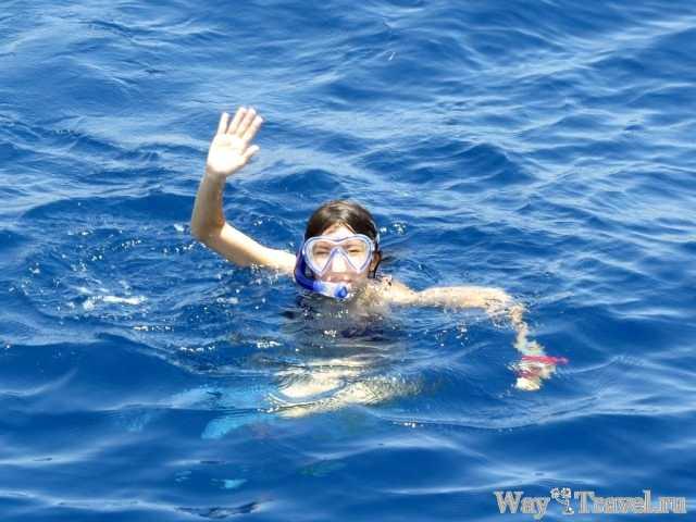 Снорклинг в Рас Мохаммеде (Ras Mohammed snorkeling)