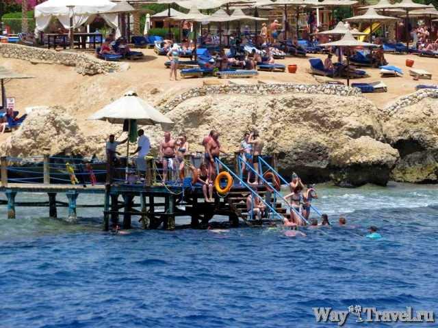 Купание с понтона (Sharm El Sheikh)