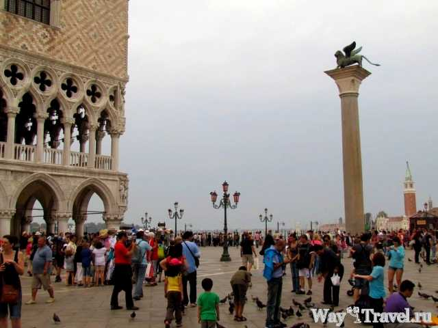Колонна с символом Венеции на площади Сан Марко