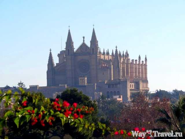 Вид на Кафедральный собор (Catedral de Santa Mar?a de Palma de Mallorca)