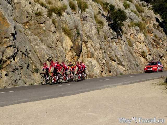 Горная тренировка велосипедистов (Mountain bicyclists training)