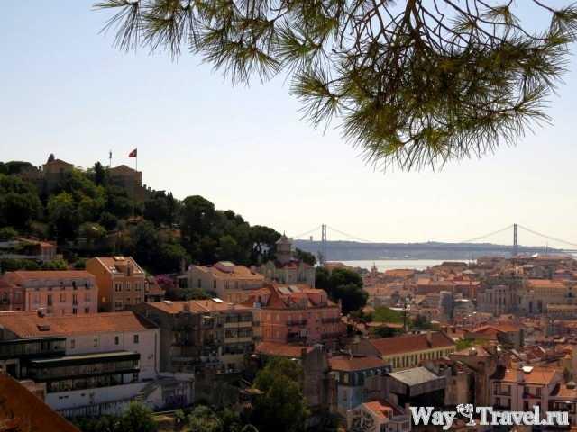 Вид на Лиссабон с одной из смотровых площадок на холмах (Lisboa view point)