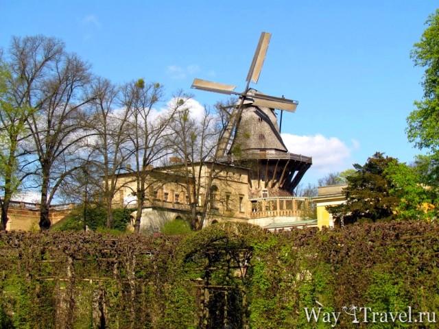 Ветряная мельница (M?hle)
